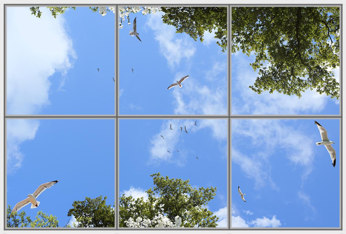 Birds Trees 6